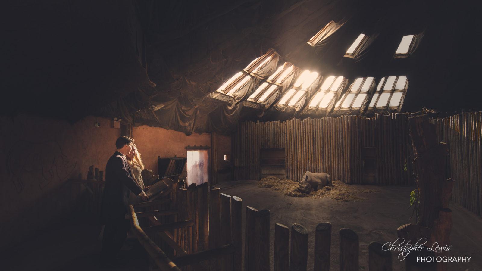 Chester-Zoo-Wedding-185