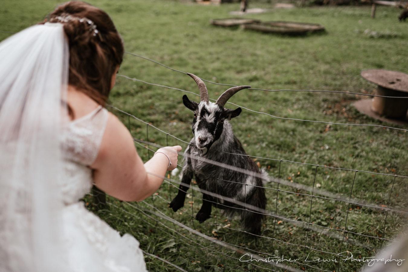 Salmesbury Hall Wedding - 45